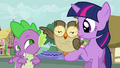 Owlowiscious swats Spike with his wing S03E11.png