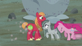 Pinkie Pie pushes Marble next to Big Mac S5E20.png