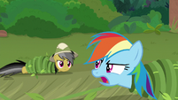 "Rainbow ""just here to rescue Fluttershy!"" S9E21"