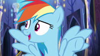Rainbow --that pony really needs to chillax-- S6E21