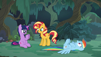 Rainbow Dash falls over onto the ground EGSB