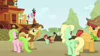 Raise This Barn family square dance S3E08