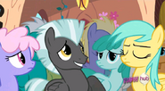 S2E22 Nopony's getting sick on my watch