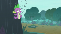 Spike falling along a tree's bark S8E11