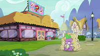 Spike with Twilight's charts on his head S9E16