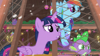 Twilight, Dash, and Spike see figure jump out window S8E16