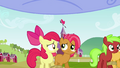 Apple Bloom and Babs Seed looking worried S3E08.png