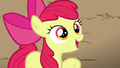 Apple Bloom claims AJ to be the best sister of all time S5E17.png