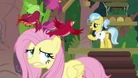 Birds fluttering in a panic over Fluttershy S9E18