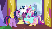 """Cadance """"the scroll we sent yesterday?"""" MLPBGE"""