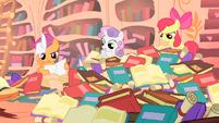 Cutie Mark Crusaders librarians S1E18