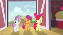 Cutie Mark Crusaders return to the barn in failure S8E10