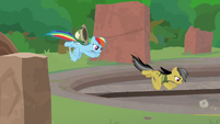 Daring and Rainbow fly into the temple S9E21