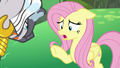 "Fluttershy ""what's happening to you?"" S7E20.png"