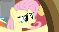 Fluttershy -Dragons- S02E21