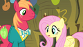 Fluttershy confused S4E14.png