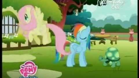 My Little Pony - Find a Pet (versione italiana)