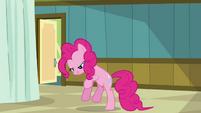 Pinkie Pie 'but a big orange' S2E16