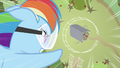 Rainbow Dash about to hit barn S2E03.png