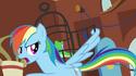 Rainbow Dash cutie mark error S03E13