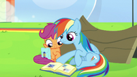 Rainbow Dash looking at more photos S7E7