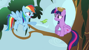 Rainbow Dash talking to Princess Twilight S4E1