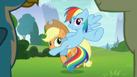 Rainbow blocking Applejack's view S8E9