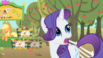 Rarity shocked S1E20