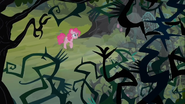 S03E03 Pinkie in bramble forest
