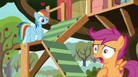 "Scootaloo ""clearing up what I should do"" S8E20"