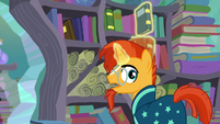 "Sunburst ""important wizard work to do around here"" S6E2"