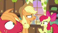 Apple Bloom asks her siblings -why-- S7E13
