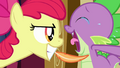 Apple Bloom tickles Spike with a feather S03E11.png