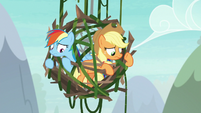 Applejack's lasso doesn't catch anything S8E9