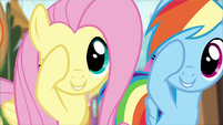 Fluttershy and Rainbow Dash doing the Pinkie promise S4E01