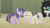 Fluttershy being mean to Twilight S02E01