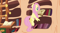 Fluttershy finds the answer S3E5