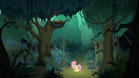 Fluttershy lost in the Everfree Forest S8E13