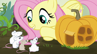 Fluttershy talking to the mice S5E23