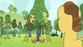 Grand Pear watching his family pick pears S7E13.png
