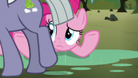 Limestone Pie walking past Pinkie Pie S8E3
