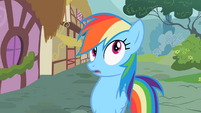 Rainbow Dash super hearing S2E8
