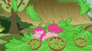 S03E04 Pinkie Pie leży na liściach