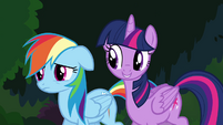 Twilight and Rainbow -in every Daring Do book- S4E04