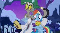 Winterchilla wriggling in Dash's hooves MLPBGE