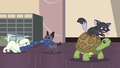 Animals playing together in the shelter EGDS23.png
