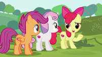 Apple Bloom --know what they're doin'-- S6E14