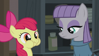 Apple Bloom spends time with Maud S5E20