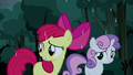 Apple Bloom wants to keep going S5E6.png