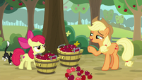 "Applejack ""knocked down by the wind"" S9E10"